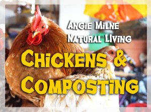 chicken_composting